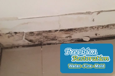 Mold removal in Howard Beach